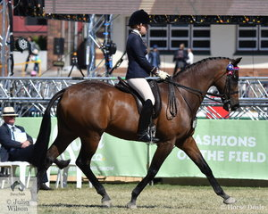 Tess O'Connor rode 'Velocity' to take sixth place in the class for Open Hack 16-16.2hh.