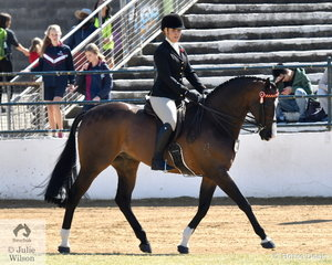 Kirsty Harper-Purcell rode her well performed, 'Worldly' to take sixth place in the class for Open Hack 16-16.2hh.