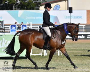 Tyler Harris rode the Styles Equestrian, A and T Harris and Monaghan nomination, 'Farleigh Esmeralda' to win the class for Novice Show Hunter Galloway 14.2-15hh and go on to be declared Reserve Champion Novice Show Hunter Galloway.
