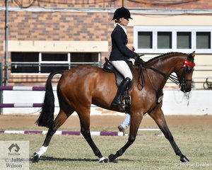 Isabella Cross-Winston rode her own and Kirsty Harper-Purcell's nomination, Argyl Imprint' to win the class for Open Hack 15-15.2hh.