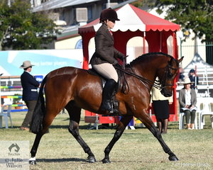 Lee Traynor rode her daughter Elsie's, 'Victoria Royal Mint' to win the class for Open Show Hunter Galloway 14-14.2hh and claim the Show Hunter Galloway Reserve Championship.