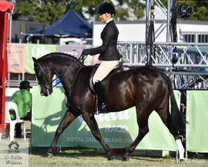 Successful young rider, Mikayla Vankampen rode the Austin, Lilley and Edwards Family nomination, 'Saravale Focused' to take second place in the class for Open Show Hunter Galloway 14-14.2hh.