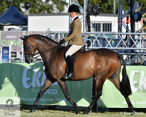 Ashleigh Harris rode the Styles Equestrian, A and T Harris and C Glenny nomination, 'Astbury Aristocrat' to win the class for Open Show Hunter Galloway 14.2-15hh and go on to claim the Show Hunter Galloway Championship.
