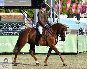 Riley Kent rode his own and Nina Stone's, 'National Velvet' to take second place in the class for Open Show Hunter Galloway 14.2-15hh.