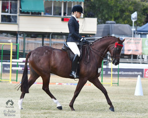 Tahnaya Ferris', 'Monrose Park Making Music' took second place in the class for Open Lightweight Galloway 14-14.2hh.