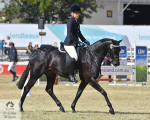 Julieanne McCool rode the McCool and Lawson nomination, 'Rosedale Secret Attraction' to take third place in the class for Open Lightweight Galloway 14-14.2hh.