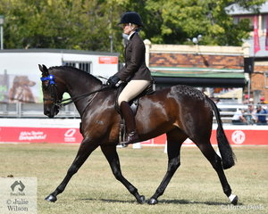 Ryanne McIvor rode Joanne Uppington and Pat Lenihan's, 'Kensington Tuscan Diamond' to win the class for Lady's Galloway and went on to claim the 2019 Royal Queensland Show Galloway Championship.