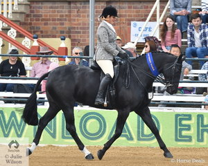 Emily Wonka rode her own and Tony Rodgers-Falk's, 'Dicavalli Diamonds' to win the class for Open Show Hunter 15-15.2hh.