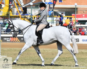 Lindsey Blanch rode her , 'Dicavalli Royal Gustav' to win the class for Lady's Show Hunter.