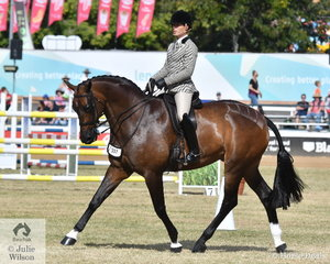 Adam Oliver rode the Universal Stables and Rebecca Crane nomination, 'Federer' to win the class for Show Hunter Over 16.2hh and claim back to back Royal Queensland Show Show Hunter Championships.