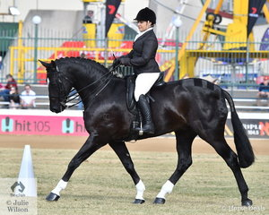 The Lovell Family's, 'Dicavalli Royal Rory' always wins the prize for the horse you would most like to ride on the showgrounds. He is pictured with Abbey Lovell up and on their way to winning the class for Open Show Hunter 15.2-16hh.