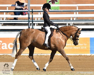 Anastasia Blanch rode her own, 'Bordershow Moonlight' to win the class for Novice Show Hunter Pony 12-12.2hh.