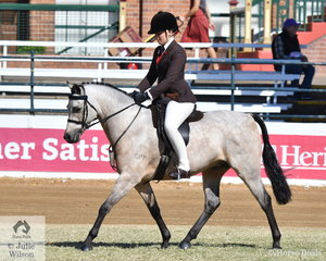 Alexandra Buster Jones rode Melinda Richardson's, 'Gracefield Beautiful N Brass' to take second place in the class for Novice Show Hunter Pony 12.2-13hh