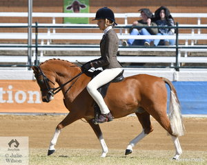 Chelsea Webb's, 'Richdale Partiot' took fifth place in the class for Open Show Hunter Pony N.E.12hh.