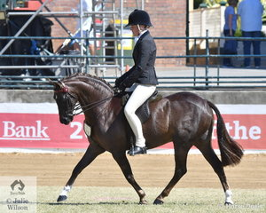Tyler Harris rode the Styles Equestrian, A and T Harris and Chelsea and Holly Taunton's nomination, 'Whitmere Royal Opera' to win the class for Open Show Hunter Pony 12.2-13hh and go on to claim the 2019 Royal Queensland Show Show Hunter Pony Championship.