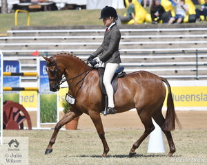 Tahnaya Ferris rode the Universal Stables and Kate Kyros nomination, , 'Braeburn Oscar de la Renta' to second place in the class for Open Show Hunter Pony 13-14hh.