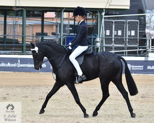 Claire Fedrick rode Rebecca Fedrick's Champion Novice Small Pony, 'Kennallywood Kensington' to take third place in the class for Open Pony 12-12.2hh.