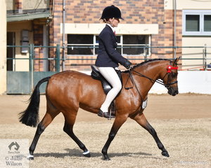 Isabella Cross-Winston rode the Harper-Purcell and De Jong nomination, 'Silkwood Heaven Fore Sure' to win the class for Open Pony N.E. 12hh and go on to claim the Small Pony Reserve Championship..