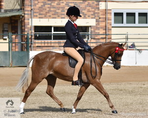 Bianca Vankampen rode the Austin, Lilley and Edwards nomination, 'Langtree Wild Orchid' to take second place in the class for Open Pony 12-12.2hh.