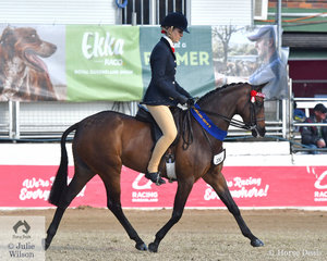 Jasmine Hunt rode her own, John Paget and Don Miller's nomination, the Champion Novice Large Pony, 'Lydena Diadem' to win the class for Open Pony 13-13.2hh.
