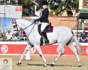 Lindsey Blanch rode her splendid, 'Dicavally Royal Gustav' to win the class for ANSA Mare/Gelding Under Saddle Over 16hh and go on to claim the ANSA Under Saddle Championship.