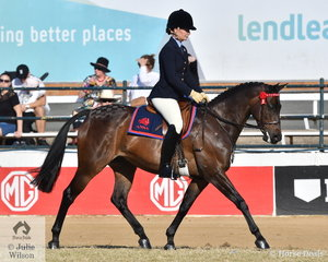 Shari Baldwin rode her own and Craig Porter's nomination, 'Sangria Baretta' to win the class for ANSA Under Saddle N.E. 15hh and claim the ANSA Under Saddle Reserve Championship.