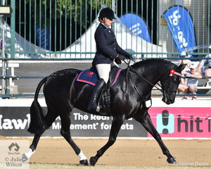 Emily Wonka rode her impressive, Dicavalli Diamonds' to win the class for ANSA Mare/Gelding Under Saddle 15 and N.E. 16hh