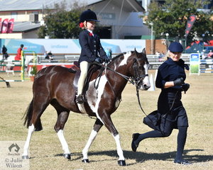 Felicity Hafemeister rode Isabella Anderson's lovely, 'Dunelm Fashion' to take third place in the class for Rider 7 AU 8 Years.