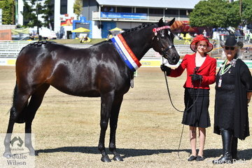Chantelle Fogarty's, 'Twilon Etherial Elegance' (Bacchante Nocturn/Money Centre) was declared Champion Mare and Supreme Champion Arabian Derivative Exhibit. The mare is pictured with handler, Toni Poole and judge Lorelei Payne.