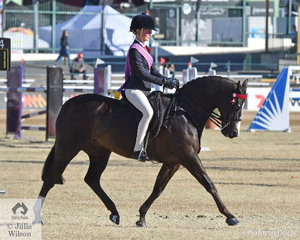 Local girl, Bianca Vankampen won the class for Girl Rider 12 AU 15 Years and went on to take out the 2019 Royal Queensland Show Senior Girl Rider Championship.