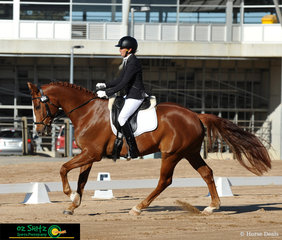 Lesley Brodbeck rode Silkbridge Scholar beautifully in the CCN1* Division A dressage test on the second day of the Tamworth International One Day Event.