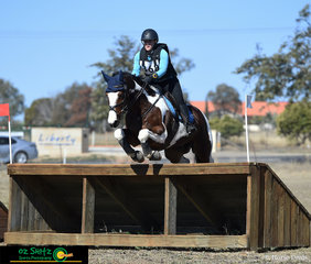 With perfect knees, Ghost of Kenlock cleared the CCI2* cross country with Lucy Ramsay at the Tamworth One Day Event.