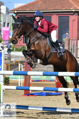 Cody Tincknell won a Junior class riding, 'Barabadeen Sir Lancelort' (pictured) earlier in the show. This morning Cody took fifth place in the Junior Championship riding his Diamond J Connect The Dots'.