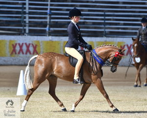 Bianca Vankampen rode the Austin , Lilley and Edwards nomination, 'Langtree Wild Orchid' to win the class for Child's Pony N.E. 12.2hh.