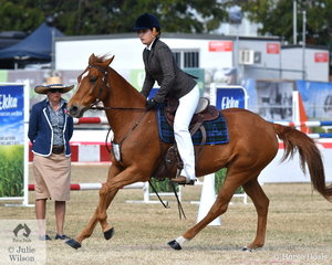 Kate Bell rode her , 'Woodhill Wanda' (Dogwood Comet/Woodhill Swivel) to third place in the class for Working Australian Stock Horse Mare.