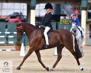 Mackenzie Thompson is having a great show and on the very last day of the 2019 Royal Queensland Show she rode the Midson Family's, 'Royalwood Mischiefmaker' to win the class for Child's Pony  13-14hh and go on to claim the Child's Pony Reserve Championship.