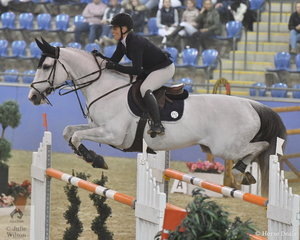 Melissa Blair and her imported Zidora jumped two good four fault rounds for 10th place in the Waratah Showjumping CSI 1* 1.40m.