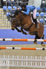 Amanda Madigan rode Diamond B Vivienne to third place in the Waratah Showjumping CSI 1* 1,40m, with a double clear round.