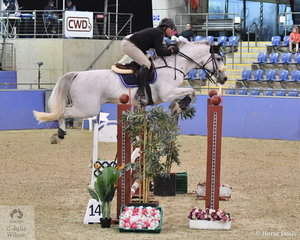 Lachlan Manuel rode Nintendro M to seventh place in the Waratah Showjumping CSI 1* 1,40m.