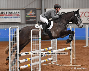 """""""Willtony Xanadu"""" ridden by Lucy Sawyers in the Showjumping phase of the EvA80 Section 3"""