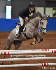 """""""Zephyr"""" ridden by Aaron Mawhinney in the Showjumping phase of the EvA80 Section 2"""