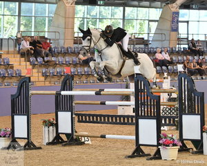 Katie Laurie rode Cero Caruso to seventh place in the tough Waratah Showjumping Grand Prix CSI1*W with four faults in both rounds.