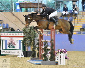 Stephen Dingwall riding Cavalier Du Rouet took 12th place  in the Waratah Showjumping Grand Prix CSI1*W.