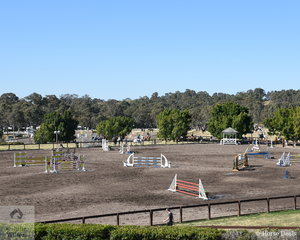 The Waratah showjumping event is in its fifth year and first time hosting a World Cup. Along with the big events in the indoor this show caters for riders from 75cm to 1.60 m in the indoor and two outdoor arenas. There are also classes for Thoroughbreds and Young Horses over the huge four days.