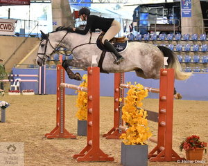Kate Hinschen rode Oaks Ventriloquist to eigth place in the Sutton Ouverture Sport Horses Future Stars.