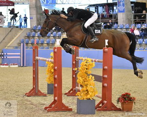 Clem Smith rode Oaks Conjuror to fourth place in the Sutton Ouverture Sport Horses Future Stars Art. 273.3.3.1.