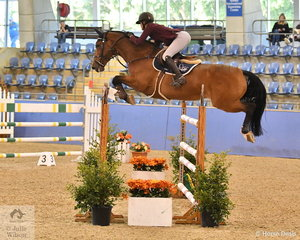 Amelia Douglass rode Eye Catcher to tenth place in The Riders Cup Mini Prix Art. 273.3.3.1.