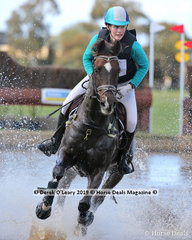 """""""Lane End Bond"""" ridden by Asha Warnock in the CCN3*-S placing 9th with a final score of 64.3"""