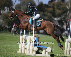 """Ruby Crofts placed 2nd in the CCN1*-S riding """"CP Astabelle"""" with a final score of 29.3"""