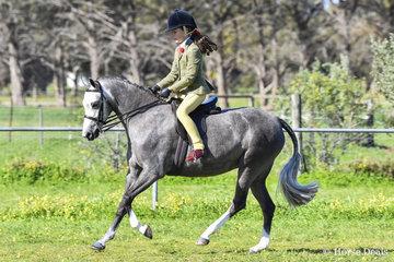 Weston Park Victorious ridden by Annabelle Richardson